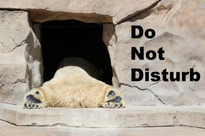 """Hotel Keepsakes – 5 Original """"Do Not Disturb"""" Signs"""